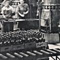 Bottelarij 't Hamerken 1951